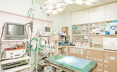 もみの木動物病院photo