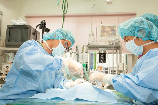 不妊手術とは